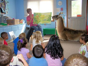 Storytime in Cromwell, CT